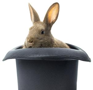 konijn in hoge hoed