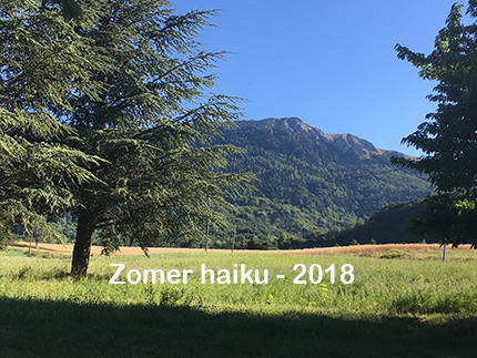 zomer haiku